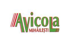 Servicii curatenie Avicola Mihailesti