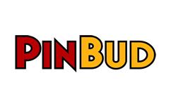 Servicii curatenie Pinbud Romania